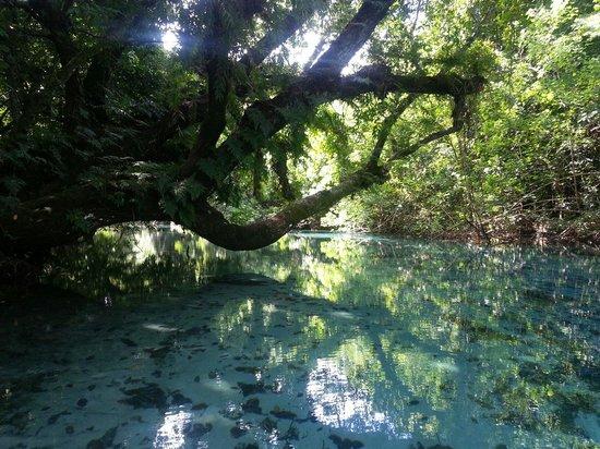Riri Blue Hole: Canoeing down the river
