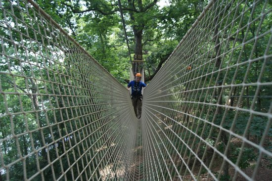 Canopy Challenge Course at Fall Creek Falls State Park A V-Net Bridge is & Aerial trekker pauses crossing the net bridge. - Picture of Canopy ...