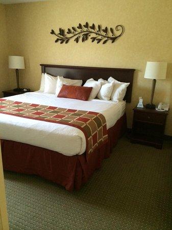 BEST WESTERN PLUS Ticonderoga Inn & Suites: Cozy bed