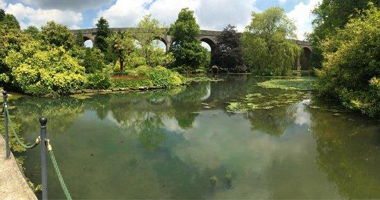 Kilver Court Gardens: Pond side