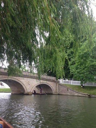 The River Cam : Cambridge river