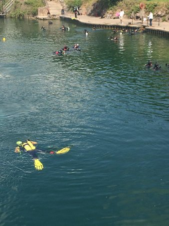 Stoney Cove: Divers