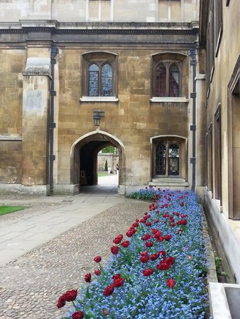 Gonville and Caius College: Gonville college