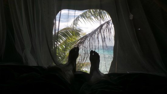 Tikehau Ninamu Resort: View from bed
