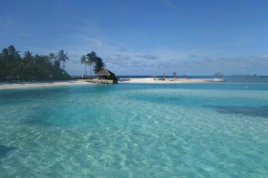Anantara VeliMaldivesResort : Miss the clear blue water!