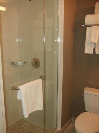 Distrikt Hotel New York City : bathroom