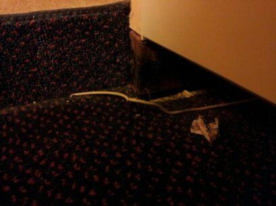 Ramada Plaza Louisville Hotel and Conference Center: Upon arrival...dirt and exposed cable