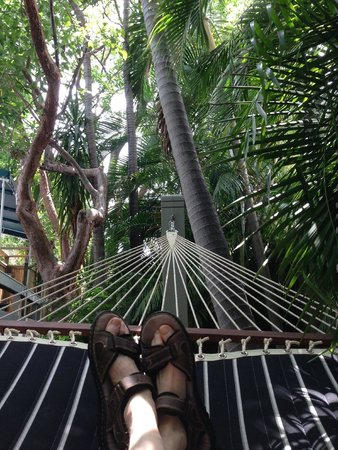 Eden House: View From The Hammock