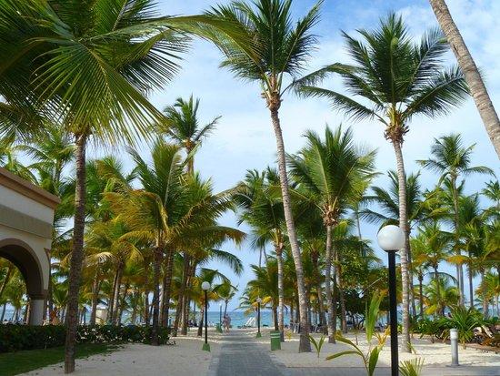 ClubHotel Riu Bambu : camino a la playa