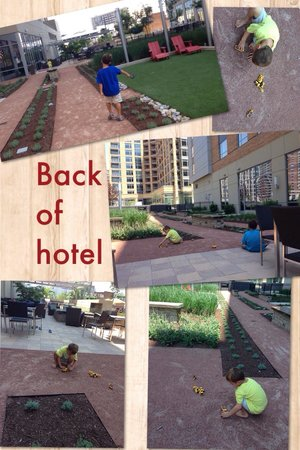 Residence Inn Arlington Ballston: Back if hotel