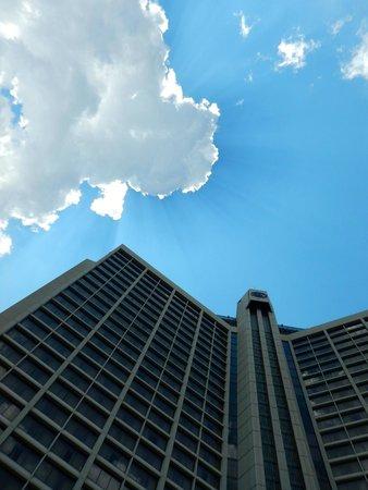 Hilton Atlanta : View from the Pool