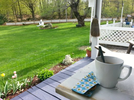 Blue Goose Inn Bed and Breakfast: Down time on the porch with tea and the sun