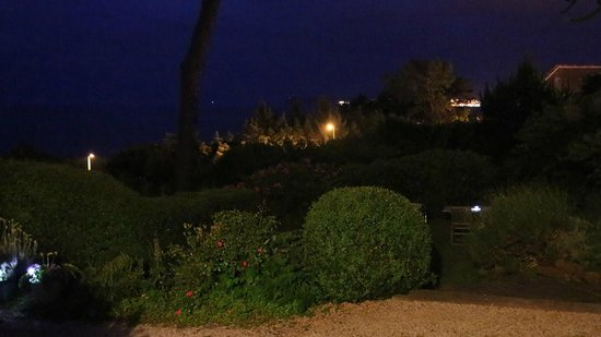 Norwegian Wood Organic Bed and Breakfast: Garden at night