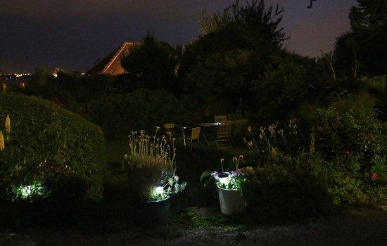 Norwegian Wood Organic Bed and Breakfast: Garden at night