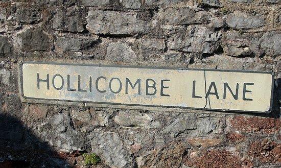 Norwegian Wood Organic Bed and Breakfast: Hollicombe Lane