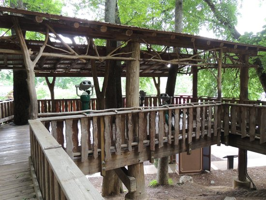 Warriors' Path State Park : tree house