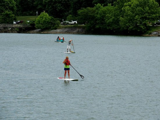 Warriors' Path State Park: paddle board on the lake