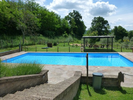 Antica Olivaia: Pool