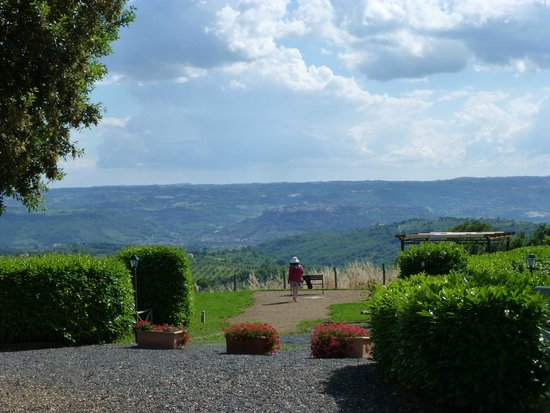 Antica Olivaia: View from the property