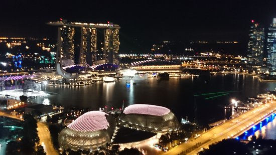 Swissotel The Stamford Singapore: 夜 景観