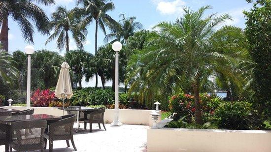 PULLMAN Miami Airport hotel: Área da piscina vista do restaurante