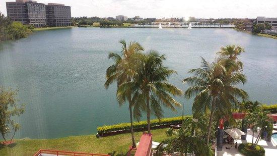 PULLMAN Miami Airport hotel : Lago