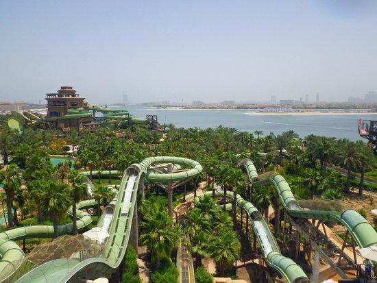 Aquaventure Waterpark : Overlooking the park