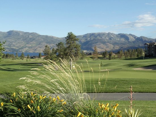 BEST WESTERN PLUS Wine Country Hotel & Suites: Nearby golf course
