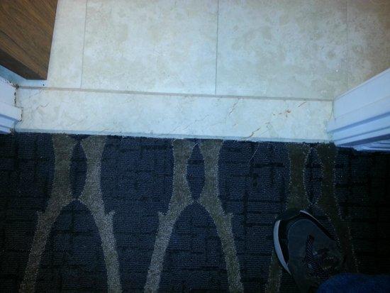 Hilton Houston Westchase: Terrible carpet job room PH40