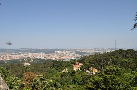 Park and National Palace of Pena: View
