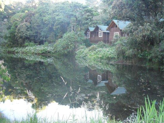 Sueños del Bosque: Vista de la habitacion desde el lago