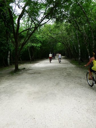 Ruines de Cobá : Bike paths through the jungle to the temples & pyramids