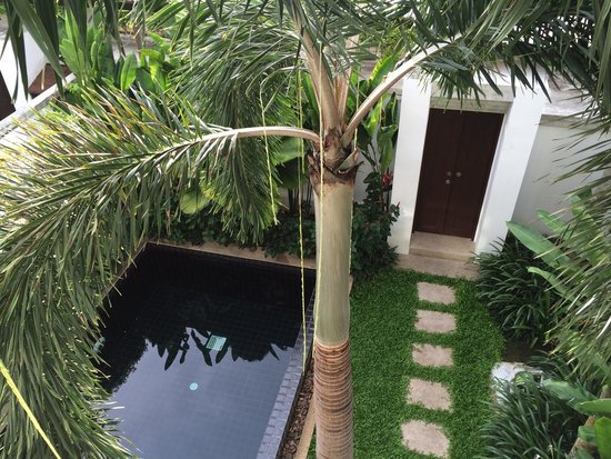 Two Villas Holiday Oriental Style Naiharn Beach : Private Pool & Courtyard.