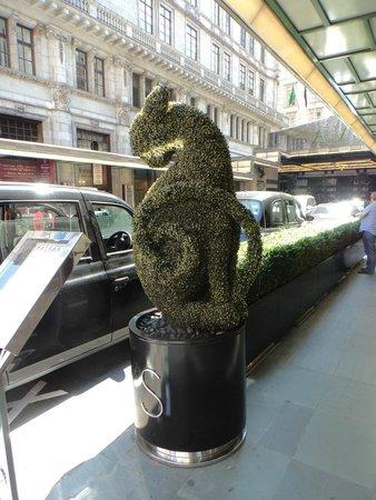 The Savoy: hotel entrance
