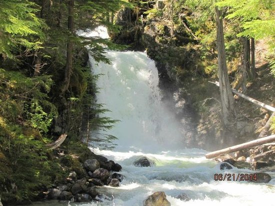 Nakusp Hot Springs: Nearby falls!