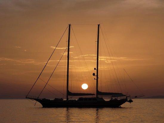 Medhills Travel Day Tours : Mykonos sunset