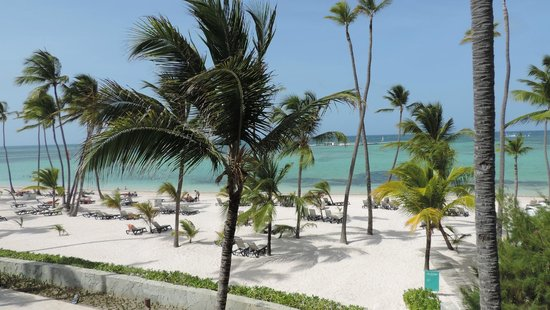 Barcelo Bavaro Beach - Adults Only : Vista