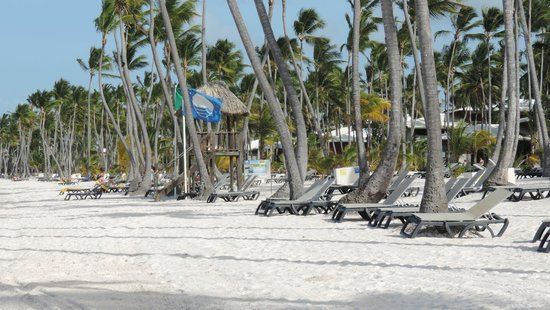 Barcelo Bavaro Beach - Adults Only : Playa