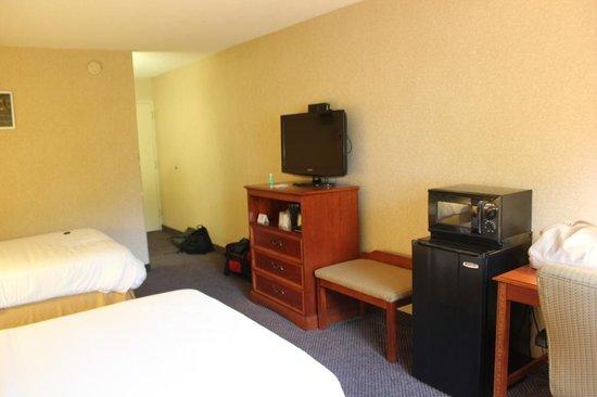 Holiday Inn Express Elmira Horseheads: Ower room.