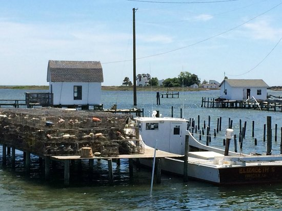 The view as you arrive at Tangier Island
