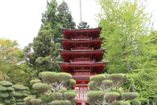 Japanese Tea Garden : Exquisite Culture