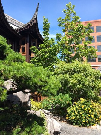 Lan Su Chinese Garden: Tea house and lovely plants