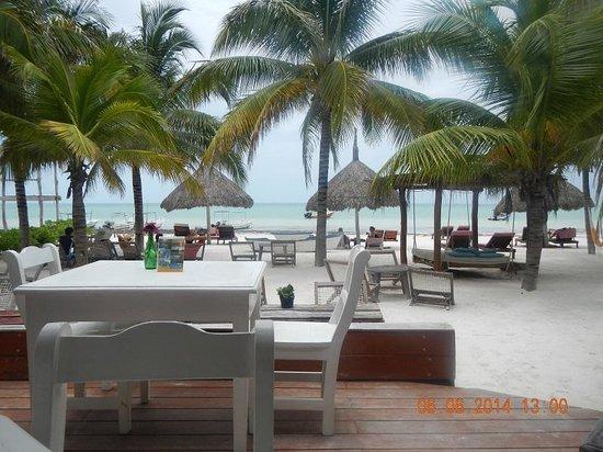 Mandarina Restaurant & Beach club by Casa Las Tortugas: Dining area/beach front