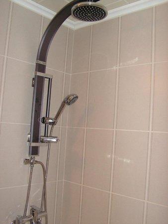 Chuncheon Tourist Hotel : Big shower head