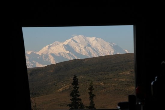 Camp Denali: View from the bed in our cabin