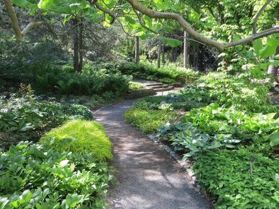 Perennial and herb garden - Picture of Cornell Botanic Gardens ...
