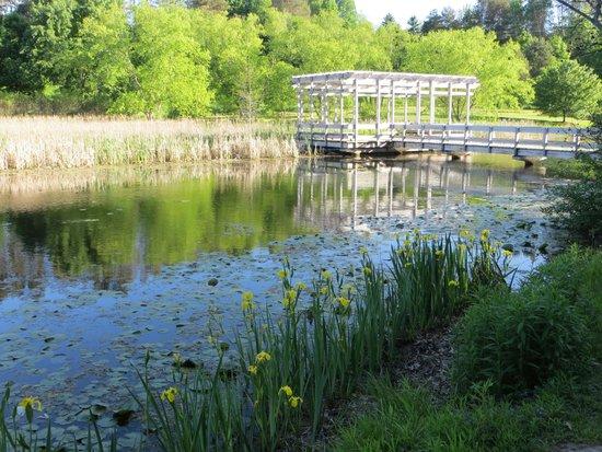 Cornell Botanic Gardens: Pont and gazebo at arboretum