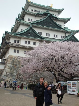 Nagoya Castle : It's beautiful during Cherry Blossom Time