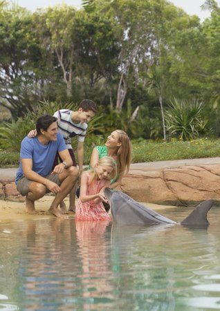Sea World Resort: Get up close and personal with Animal Adventures at Sea World