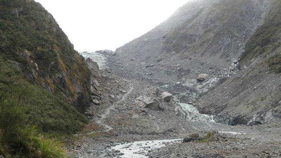 Fox Glacier Guiding: Fox Glacier from the Valley